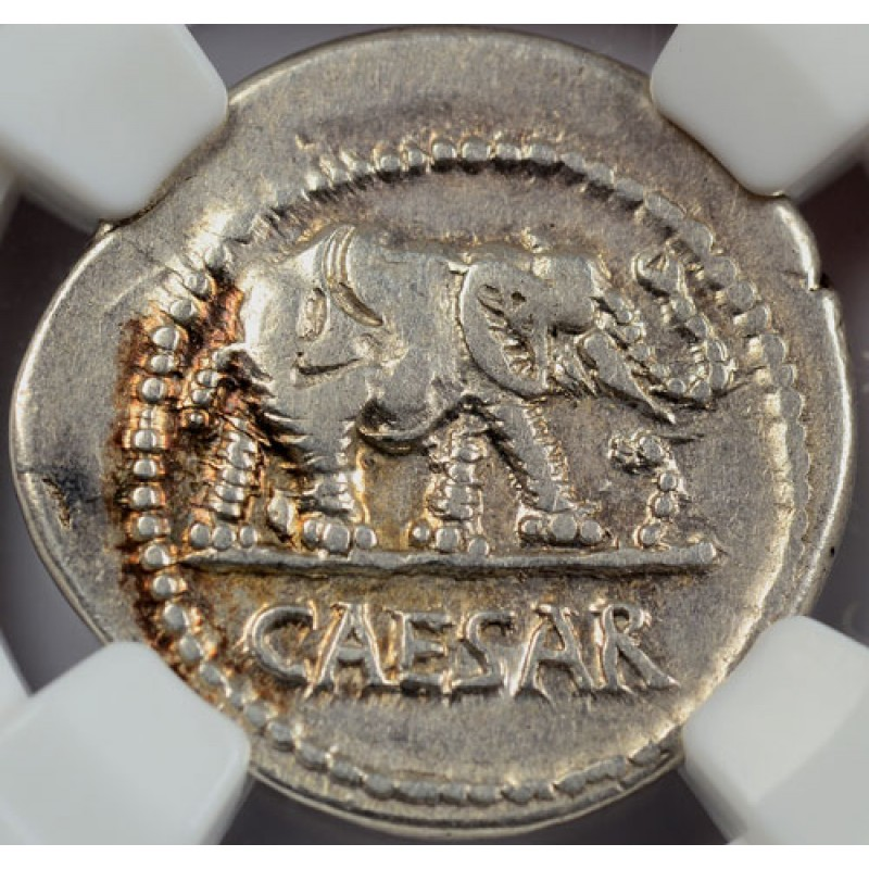 Ngc vf julius caesar elephant roman silver denarius coin circa 46 ngc vf julius caesar elephant roman silver denarius coin circa 46 44 bc freerunsca Images