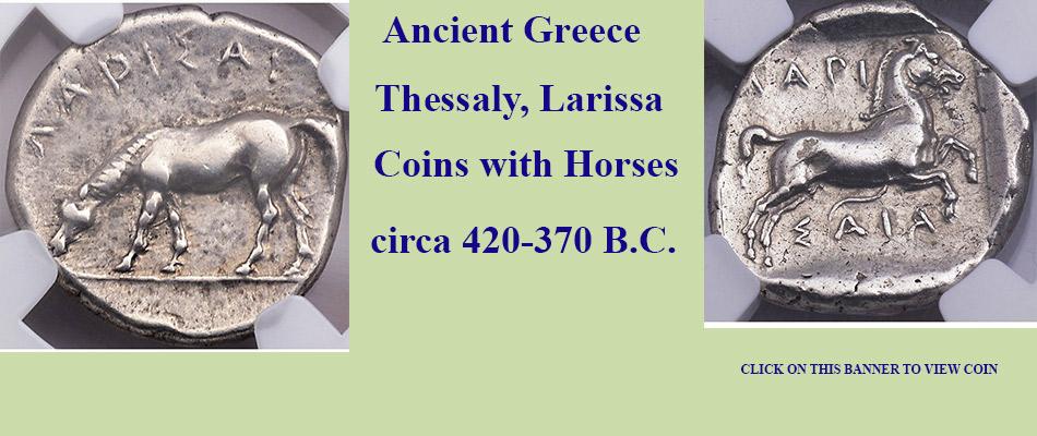 Larissa Horse